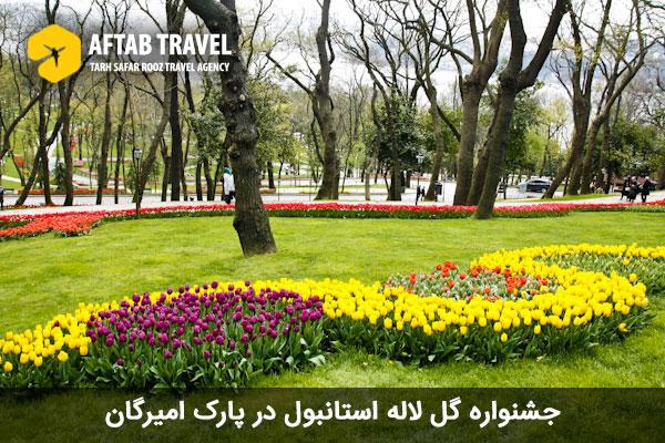 جشنواره لاله استانبول در پارک امیرگان