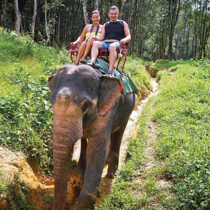 حیات وحش سامویی با فیل ها