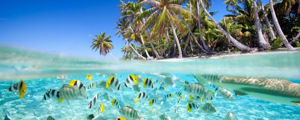 سواحل کشور مالدیو