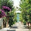 چرا باید از جزایر پرنس در استانبول بازدید کنیم؟