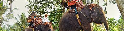 حیات وحش سامویی | ملاقات با ترسناک ترین و زیباترین حیوانات